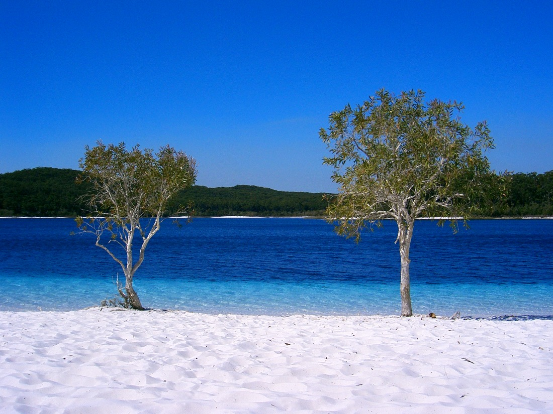 Fraser_Island_a06_lake_mckenzie